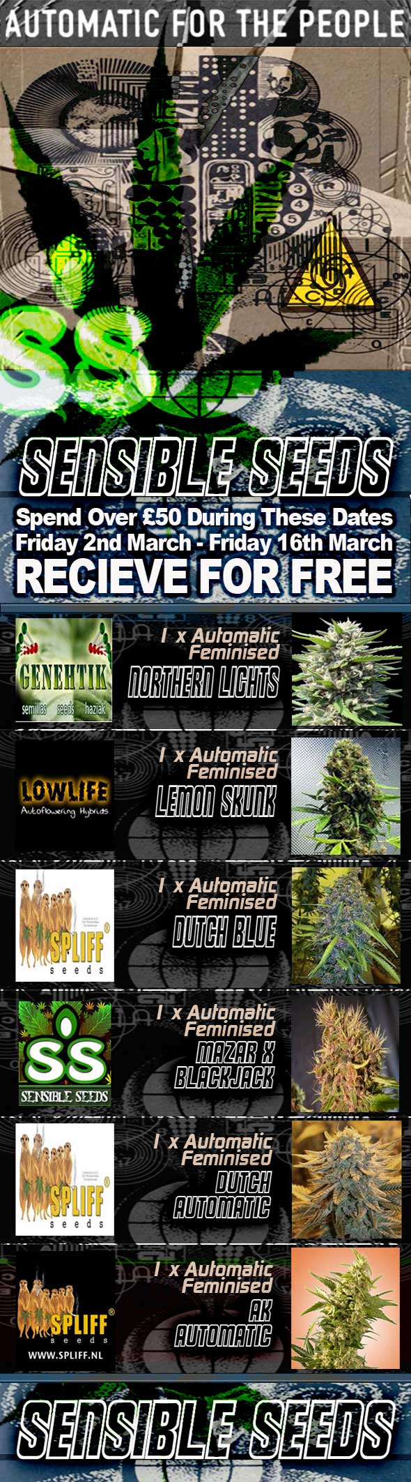Sensible-seed-Autoflower-March-offer