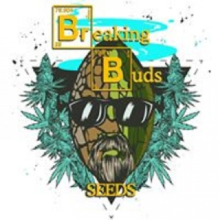 Breaking Buds Seeds