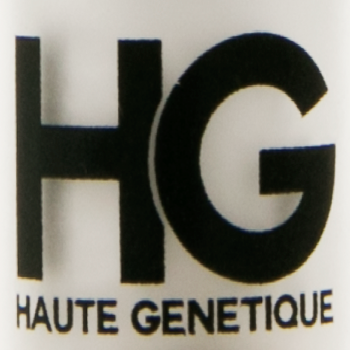 Haute Genetique Seeds