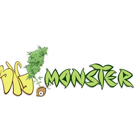 Big Monster Seeds