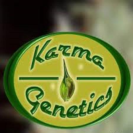 Karma Genetics Seeds
