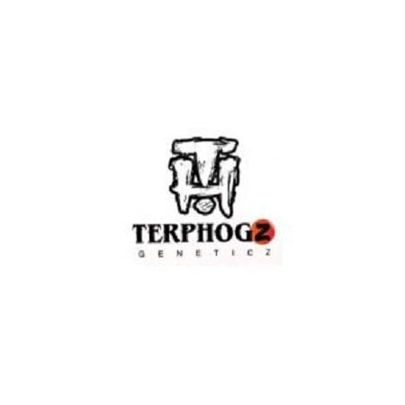 TerpHogz Genetics Seeds