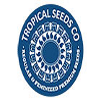 Tropical Seeds Co