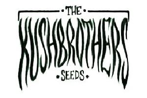 The KushBrothers Seeds