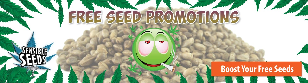 Sensible Seeds promotion