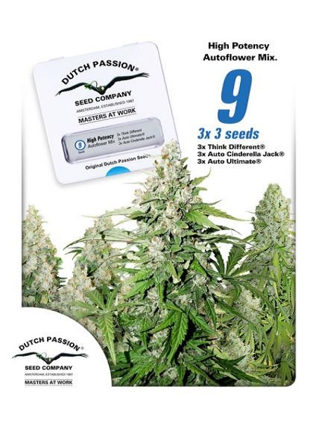 Dutch Passion Seeds High Potency Mix Auto Feminized