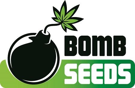 Cosmic Bomb Auto - Feminized - Bomb Seeds