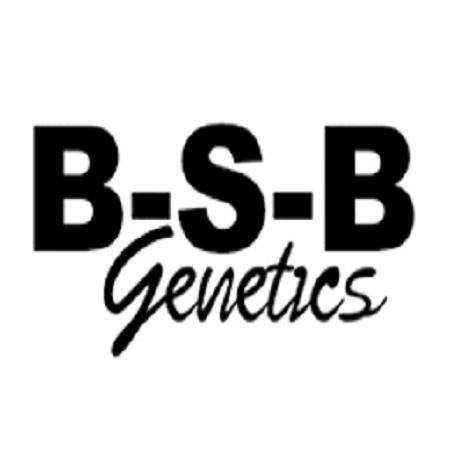 Banana Split Auto - Feminized - BSB Genetics