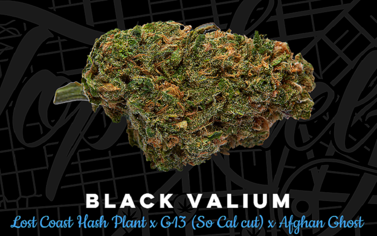 Top Shelf Elite Seeds Black Valium Feminized