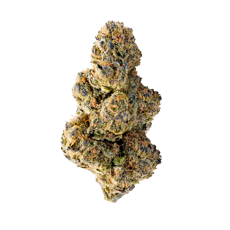 Colossal Purps - Feminized - Mega Buds