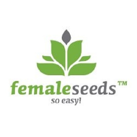 Female Seeds Auto Haze Feminized (X-Line)