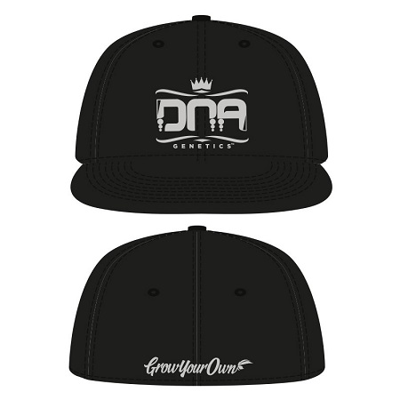 DNA Genetics Flex Baseball Hat