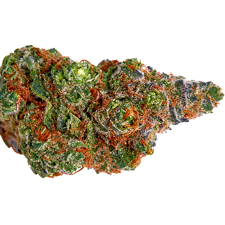 Top Shelf Elite Seeds Nightcrawler O.G. Feminized (PICK N MIX)