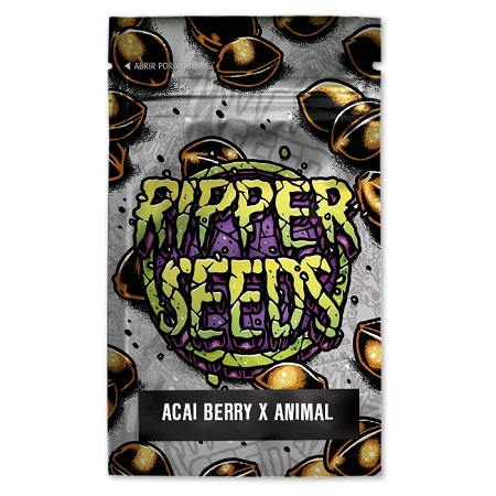 Acai Berry x Animal Cookies - Feminized - Ripper Seeds