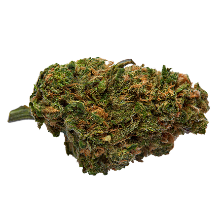 Top Shelf Elite Seeds Black Valium Feminized (PICK N MIX)