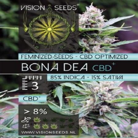 Vision Seeds Bona Dea CBD+ Feminized