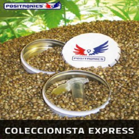 Positronics Seeds Collector's Pack Express Auto Feminized
