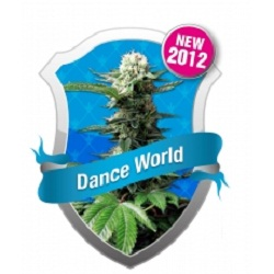 Royal Queen Seeds Dance World Feminized (PICK.N.MIX)