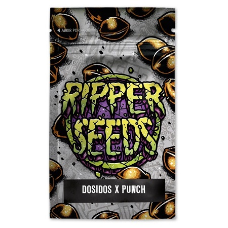 Do-Si-Dos x Purple Punch - Feminized - Ripper Seeds