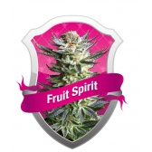 Royal Queen Seeds Fruit Spirit Feminized (PICK.N.MIX)