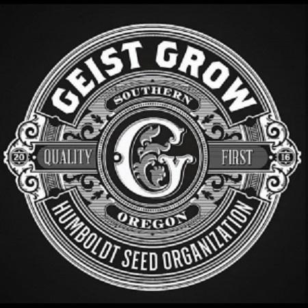 Geist OG Auto - Feminized - Geist Grow