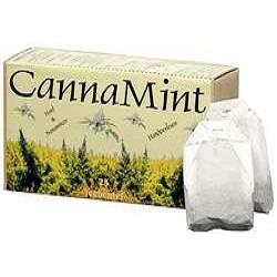 Hemp Tea Bags Cannamint