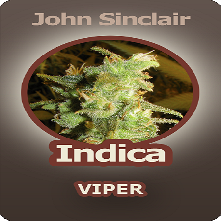 John Sinclair Seeds Indica Viper Regular