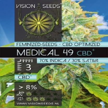 Vision Seeds Medical 49 CBD+ Feminized