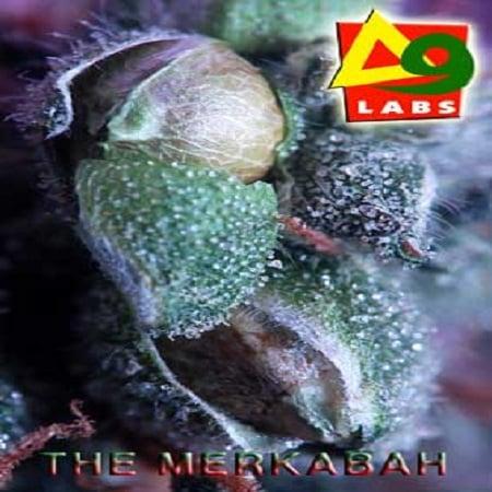 Delta 9 Labs Seeds The Merkabah Regular
