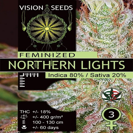 Vision Seeds Northern Lights Feminized