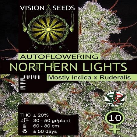 Vision Seeds Auto Northern Lights Feminised