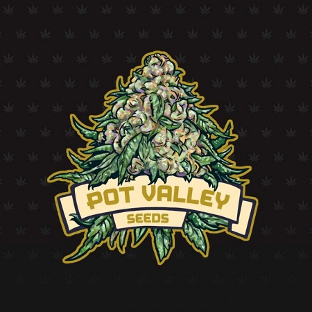 Candy Twist - Feminized - Pot Valley Seeds