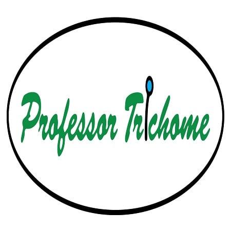 Gorilla Glue x Girl Scout Cookies - Feminized - Professor Trichome Bulk Seeds