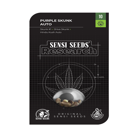 Purple Skunk Auto - Feminized - Sensi Seeds Research