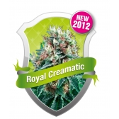 Royal Queen Seeds Royal Creamatic Automatic Feminized (PICK.N.MIX)