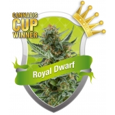 Royal Queen Seeds Royal Dwarf Feminized (PICK.N.MIX)