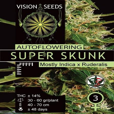Vision Seeds Super Skunk Auto Feminized