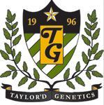 Taylor'd Genetics Milwaukee Moose Knuckle Feminised