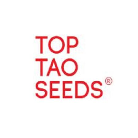Top Tao Seeds Early Sativa Regular