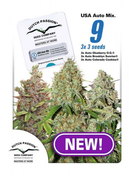 Dutch Passion Seeds USA Autoflower Mix Feminized