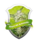 Royal Queen Seeds Royal AK Automatic Feminized (PICK.N.MIX)