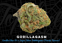 Top Shelf Elite Seeds Gorillagasm Feminized