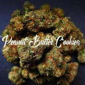 Peanut Butter Cookies - Feminized - Tastebudz