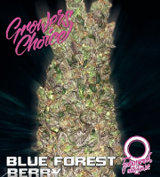 Blue Forest Berry Auto - Feminized - Growers Choice