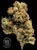 Compound Genetics Seeds Lemon Apricot Regular
