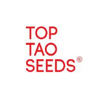 Top Tao Seeds Early Sativa Regular