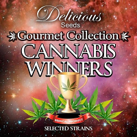 Delicious Seeds Cannabis Winners Mix #2 Feminized