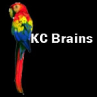 KC Brains Seeds White KC Feminized