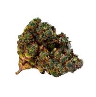 Top Shelf Elite Seeds Auto Black Valium Feminized (CPICK N MIX)