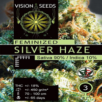 Vision Seeds Silver Haze Feminized